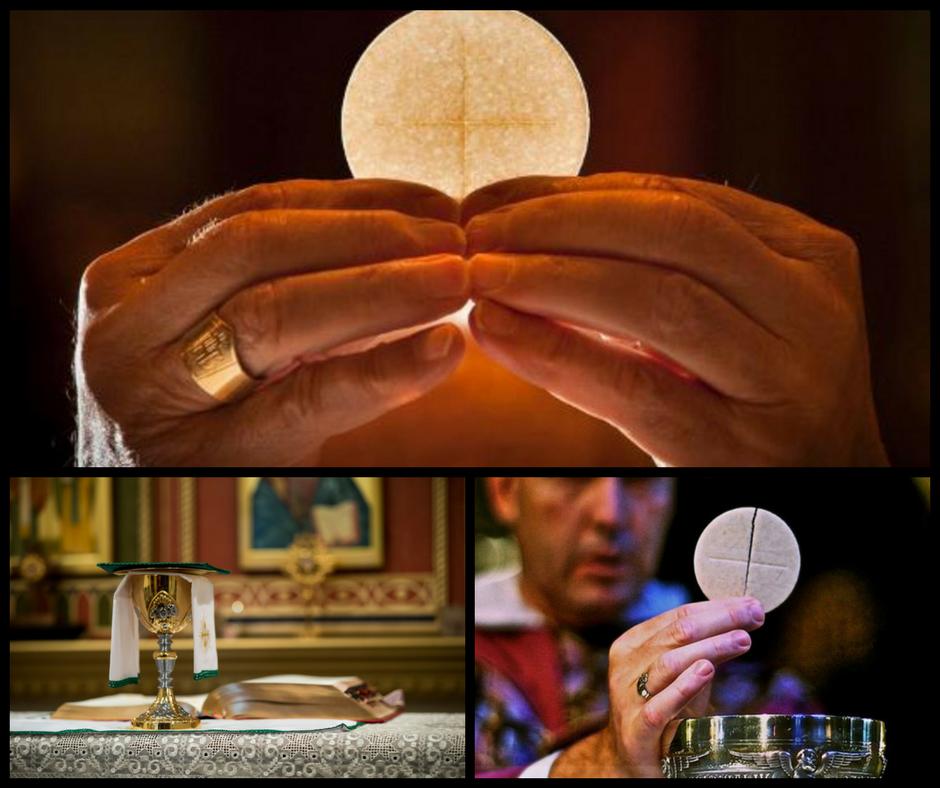 eucaristia necessidade da alma