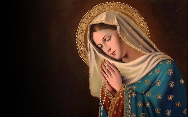 maria nossa mae, profanação