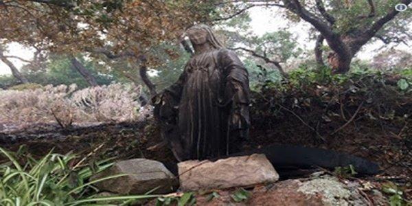 Chamas pararam diante da imagem da Virgem Maria e salva família que rezava o terço de incêndio